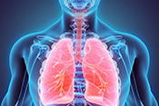 Protein in lungs could be target for asthma drugs - Photo: ©iStock/yodiyim