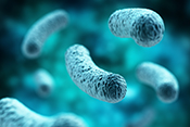 Antibiotic group shown to be effective against drug-resistant bacteria - Photo: ©iStock/adventtr