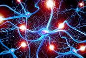 Sedative prevents neuron cell growth after TBI - Photo: ©iStock/Henrik5000w