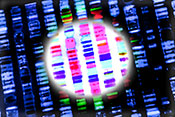 Two DNA sites linked to PTSD risk - Photo: ©iStock/Gio_tto