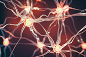 Study explains gene mutation's link to ALS  - Photo: ©iStock/imaginima
