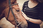 Therapeutic horseback riding can lower PTSD symptoms - Photo: ©iStock/DragonImages