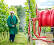 VA researcher cited in NYT piece on weed killer -