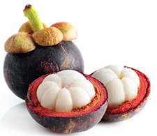 Compound in Asian fruit may fight retinal disease