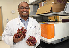 A grape-based cancer therapy?