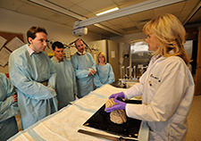 Dr. Ann McKee teaches medical students at the brain bank located at the Bedford (Mass.) VA Medical Center.