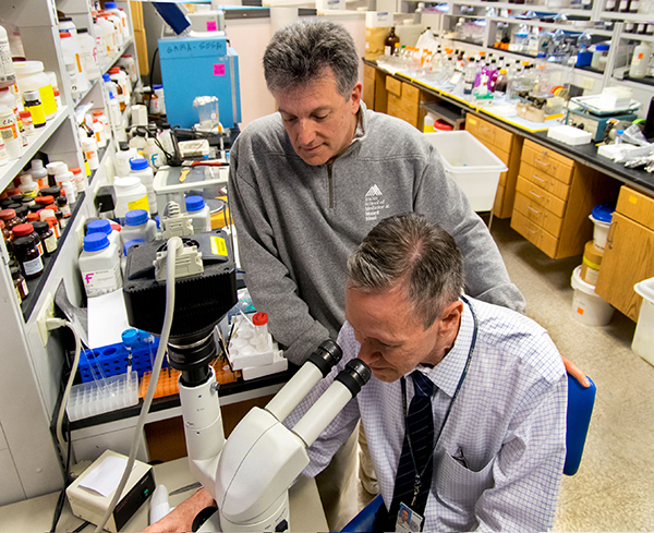 Dr. Sam Gandy (standing), seen here with colleague Dr. Greg Elder, is studying a promising Alzheimer's therapeutic called BCI-838.
